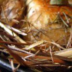Poulet à la paille en cuit en cocotte d'Alain Passard